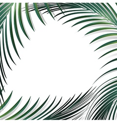 Abstract Jungle Palm vector image vector image