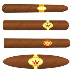 Set kubinskiyh cigars on white background vector image