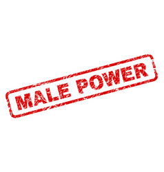 grunge male power rounded rectangle stamp vector image