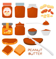 On theme big colored set different types peanut vector