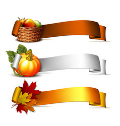 ribbon with orange pumpkins autumnal leaves and vector image