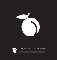 isolated juicy icon apricot element can be vector image vector image