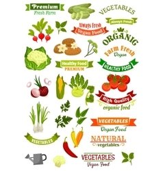 Vegetables isolated icons vegan ribbons set vector image