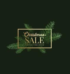 christmas season sale label sign or card vector image