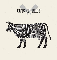 Meat cuts - beef diagrams for butcher shop vector