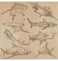 Sharks - An hand drawn pack vector