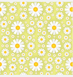white chamomile flowers on yellow background vector image