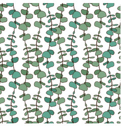 eucalyptus leaves pattern seamless background for vector image vector image