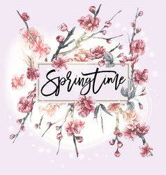 pink blooming branches of cherry vector image