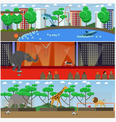 set of dolphinarium circus and zoo vector image