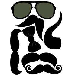 party accessories man set - glasses mustache bow vector image