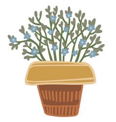 bouquet flora in woven basket rural decor vector image