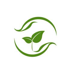 eco-friendly leaf balance vector image