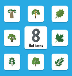 Flat icon ecology set of decoration tree acacia vector