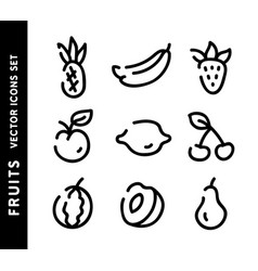 fruits hand drawn icons set outline signs vector image