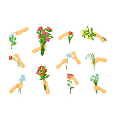 Hands pick and hold flowers set gentle springing vector