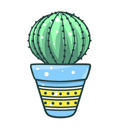 home cactus potted succulent desert plant for vector image
