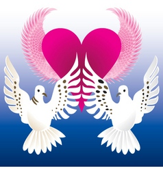 love doves vector image