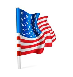 Flag of the USA vector image
