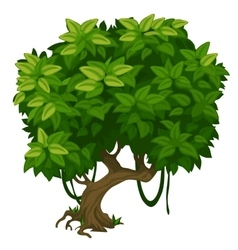 Green tree with lush foliage closeup vector image vector image