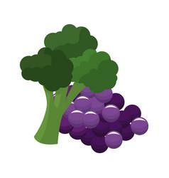 grape and broccoli icon vector image vector image