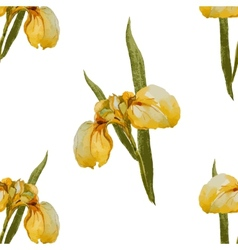 Iris flowers pattern vector image