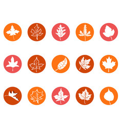 maple leaf round button icons vector image vector image