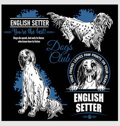 english setter - set for t-shirt logo vector image