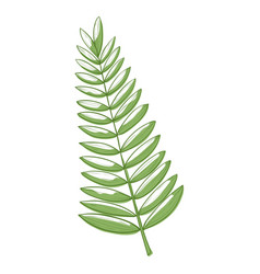 palm leaf icon green tropic floral decoration vector image