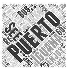 Puerto vallarta iguana Word Cloud Concept vector