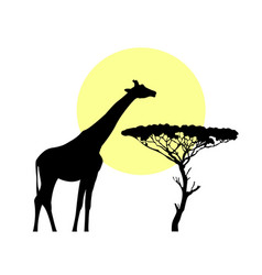 african giraffe in savanna flat design vector image