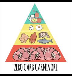 Carnivore pyramid organic healthy food illu vector
