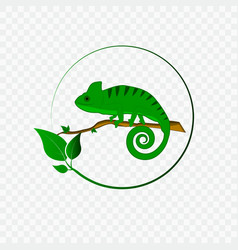 concept with chameleon logo vector image