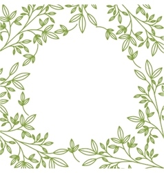 plant and leaves background vector image