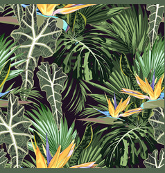 tropical pattern with strelizia flowers and leaves vector image