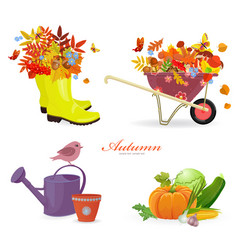 fresh collection autumn composition and gardening vector image