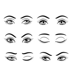 Open and closed female eyes set vector