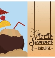 poster summer paradise beach coconut cocktail vector image