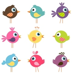 set of funny birds vector image