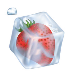 Strawberry in ice cube and bubble vector