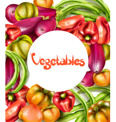 vegetables eggplant pepper yellow tomatoes vector image