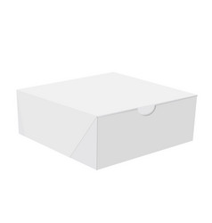 white cardboard square gift box on white vector image