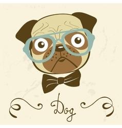 Dog gentleman of an elegant pug vector image vector image