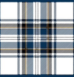 Clan stewart scottish tartan plaid vector