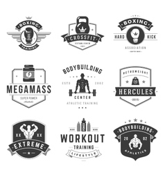 Fitness Logos Templates Set vector image