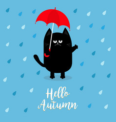 Hello autumn black cat holding red umbrella rain vector