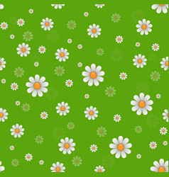 daisy flowers texture vector image vector image