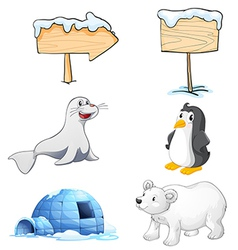 Signboards animals and an igloo at the north pole vector image