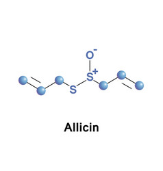 Allicin organosulfur compound vector