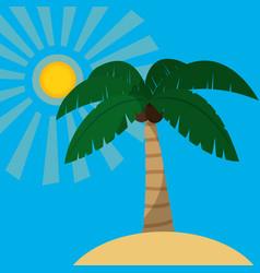 Beach and summer design vector
